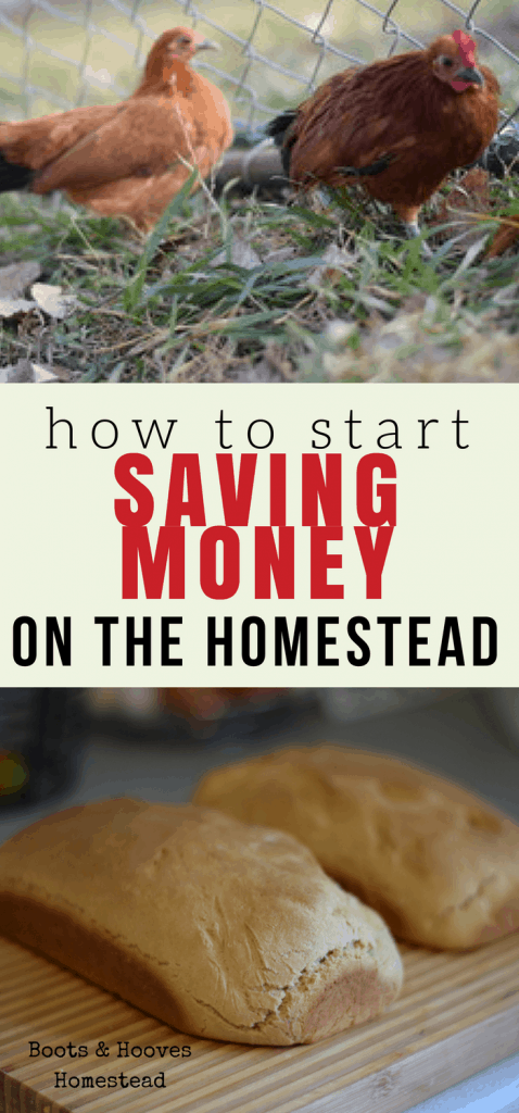 self sufficiency on the homestead. 13 ways to get started with homesteading.