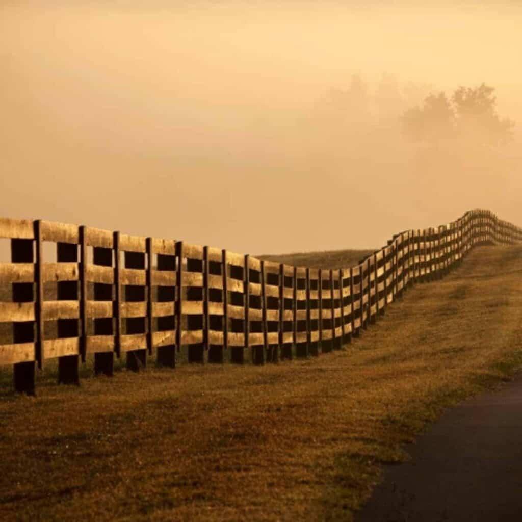 farm fence line