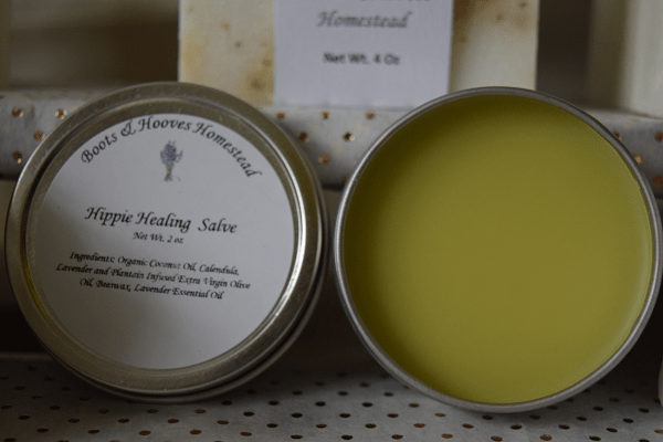 herbal salve in a round tin