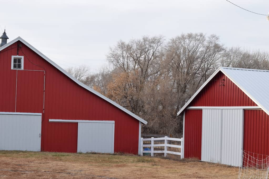 two red barns on an old farm