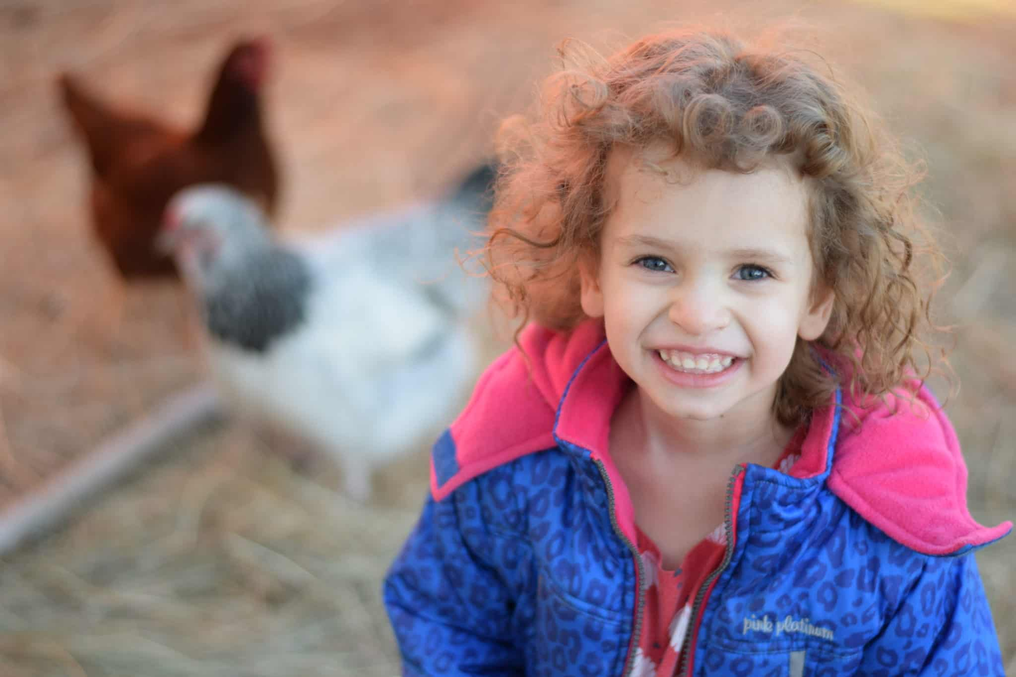 little girl in a chicken coop with two hens