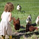 Raising Farm Kids: What it's Really Like Without TV