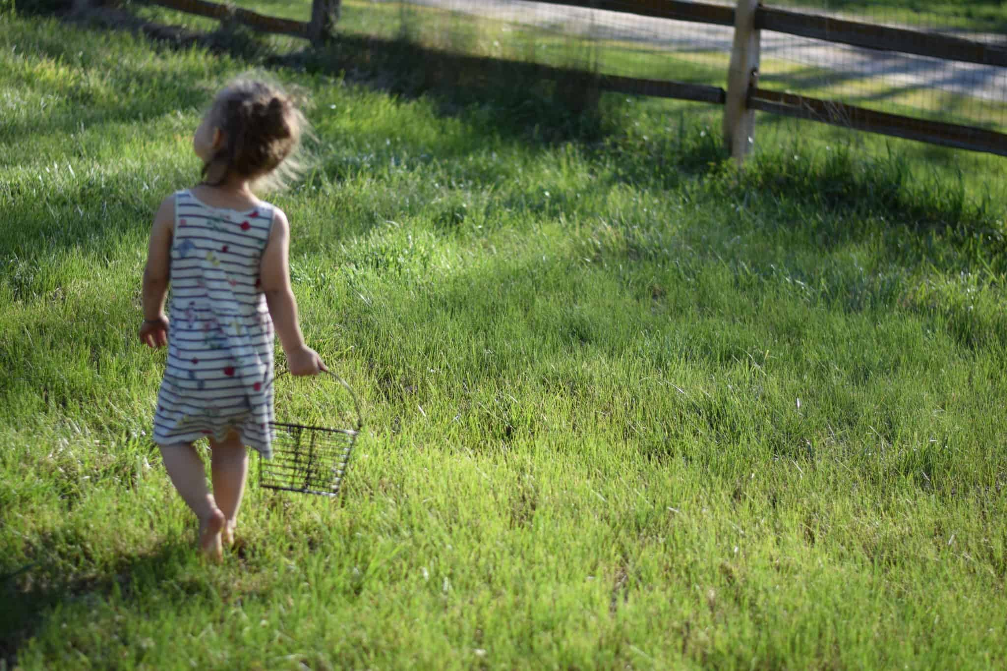 little girl carrying a black wire basket