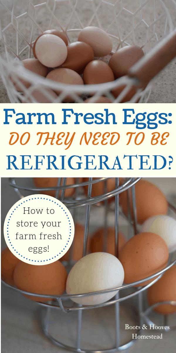 Basket & egg skelter with farm fresh eggs.