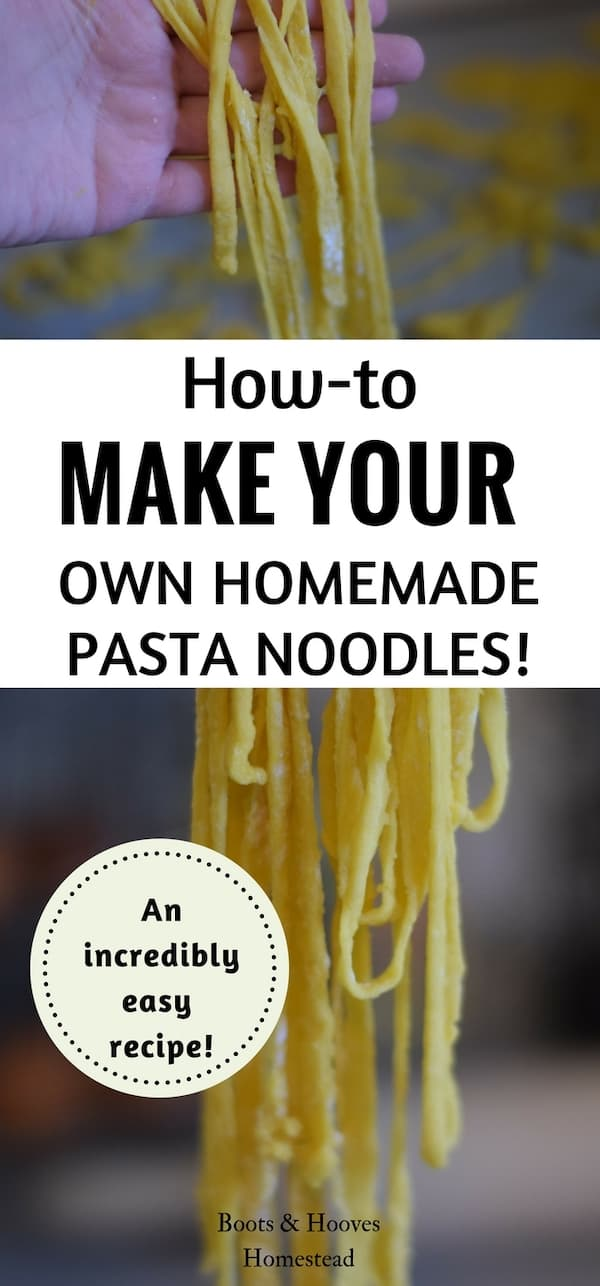 freshly made pasta noodles