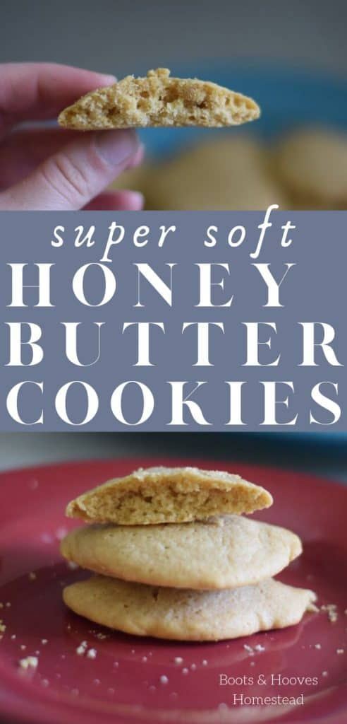honey butter cookies on red plate