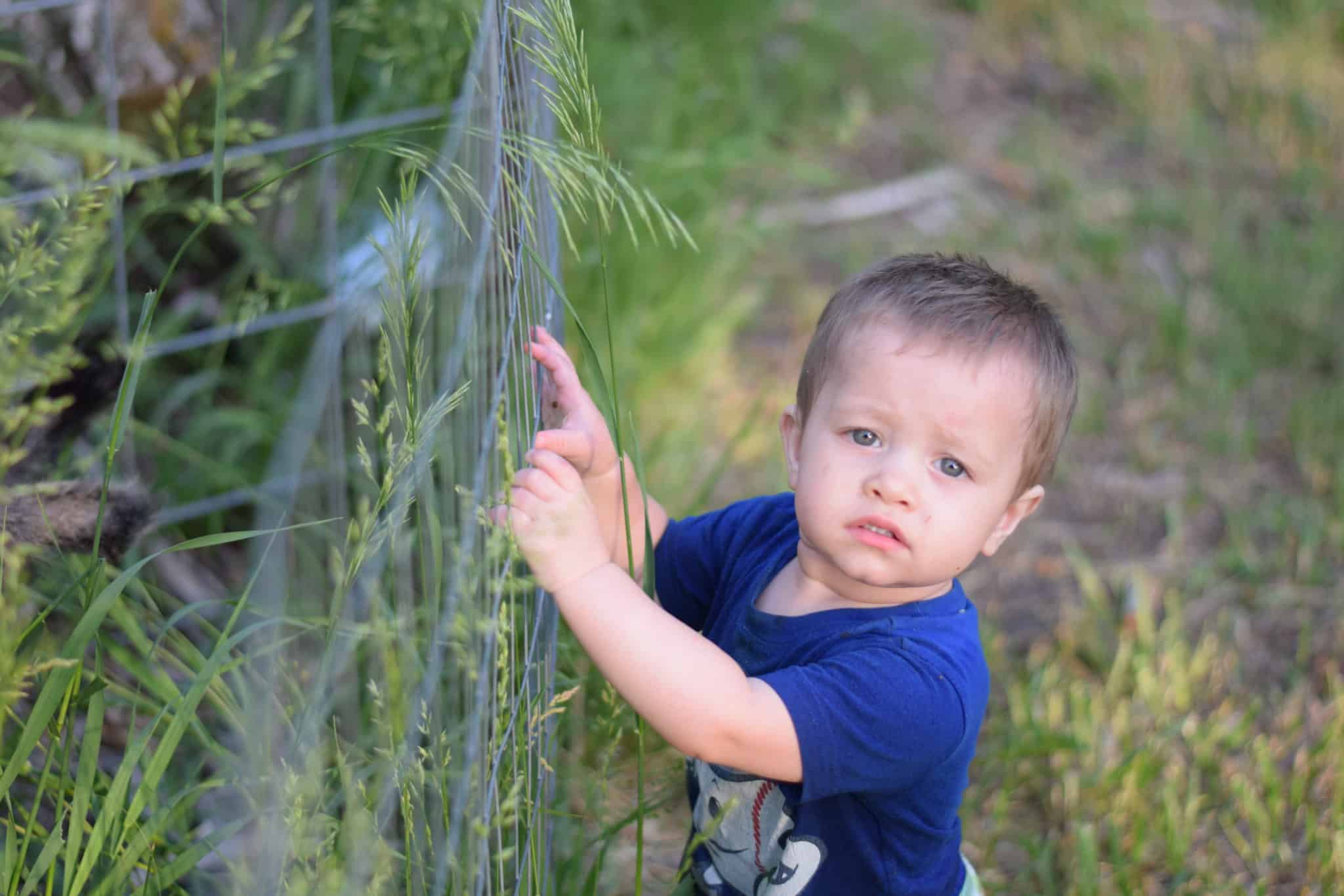 little toddler boy holding on to a fence outside