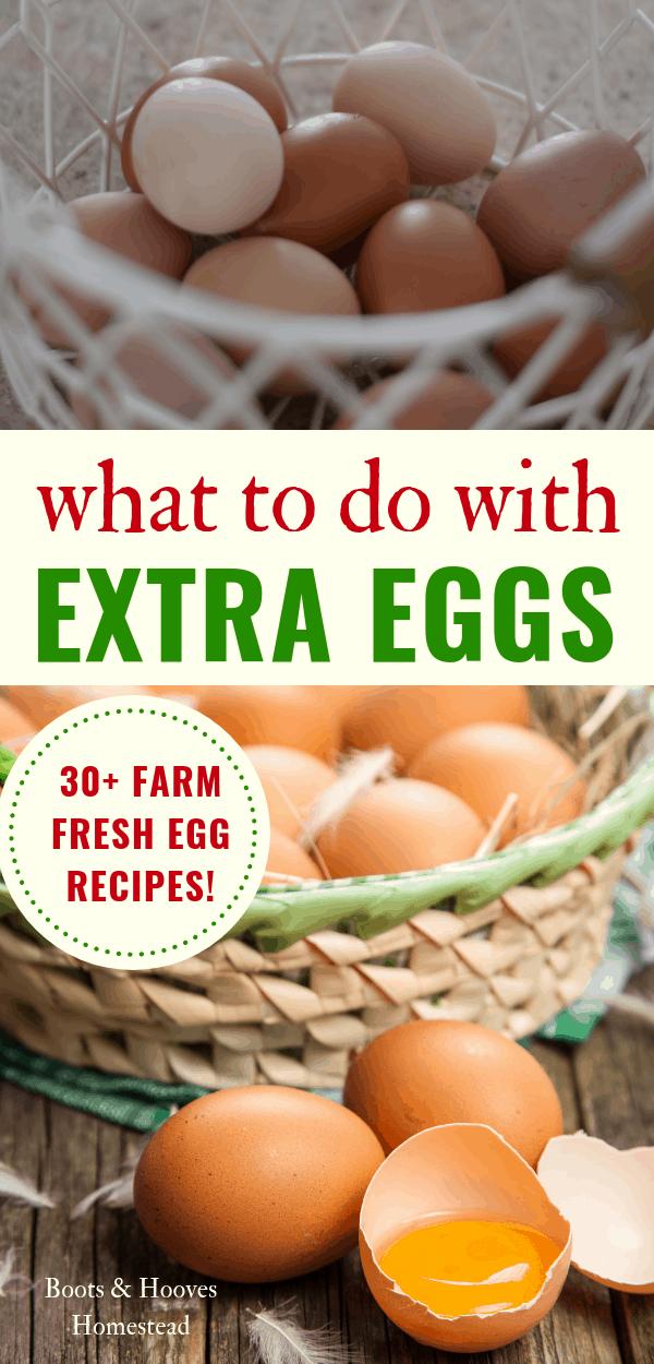basket of farm fresh eggs