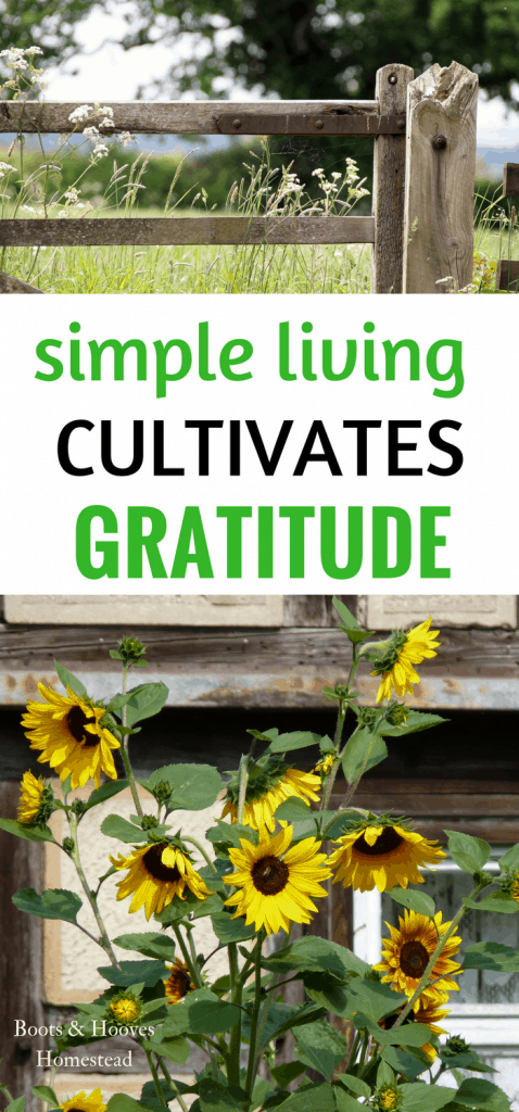 simple living cultivates gratitude