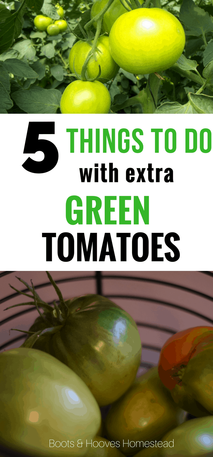 5 things to do with extra green tomatoes