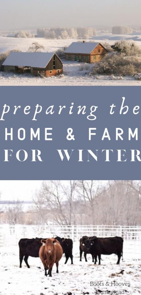 preparing for winter on the family farm
