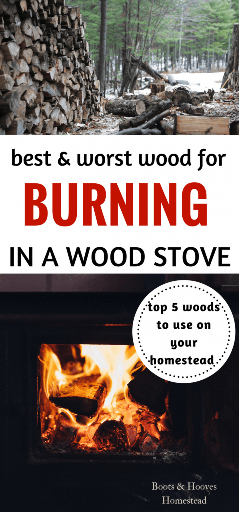 wood burning in wood stove