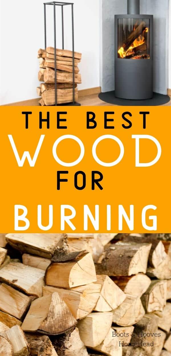 wood stove and wood pile