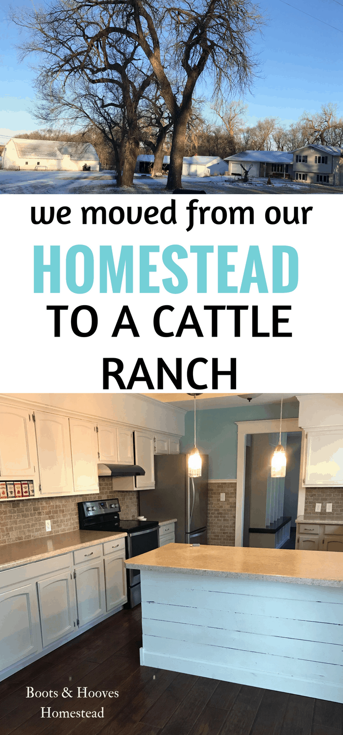 photo collage of ranch home and empty kitchen