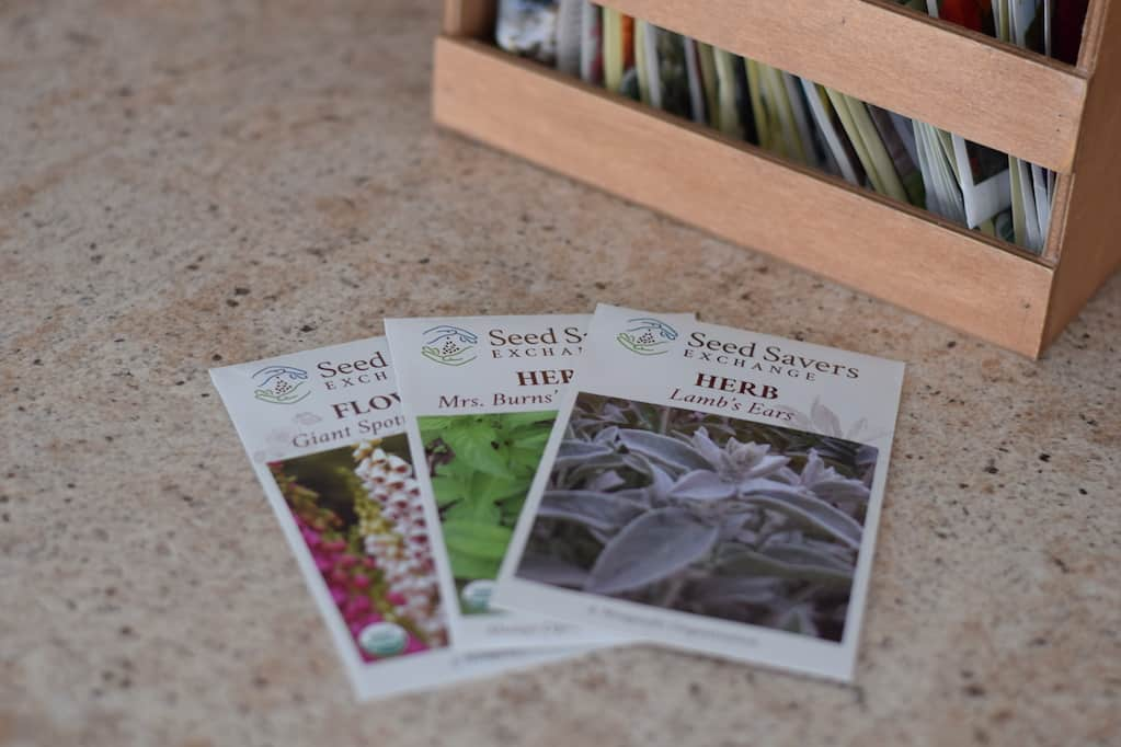 herb and flower seeds for a potager garden design