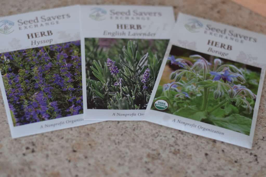 more favorite herbs for a potager garden design