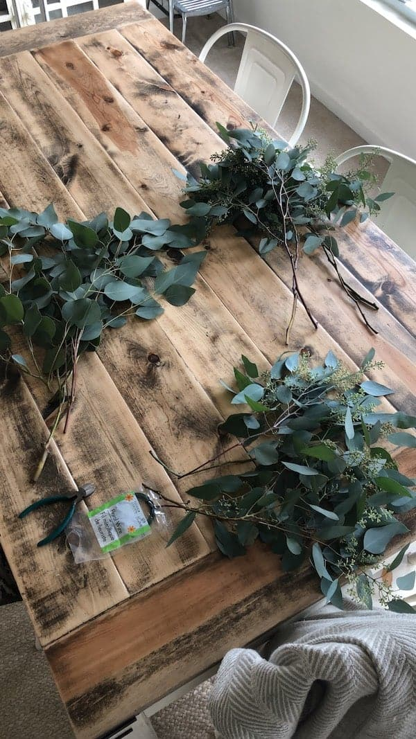 fresh cut eucalyptus in two piles on a table