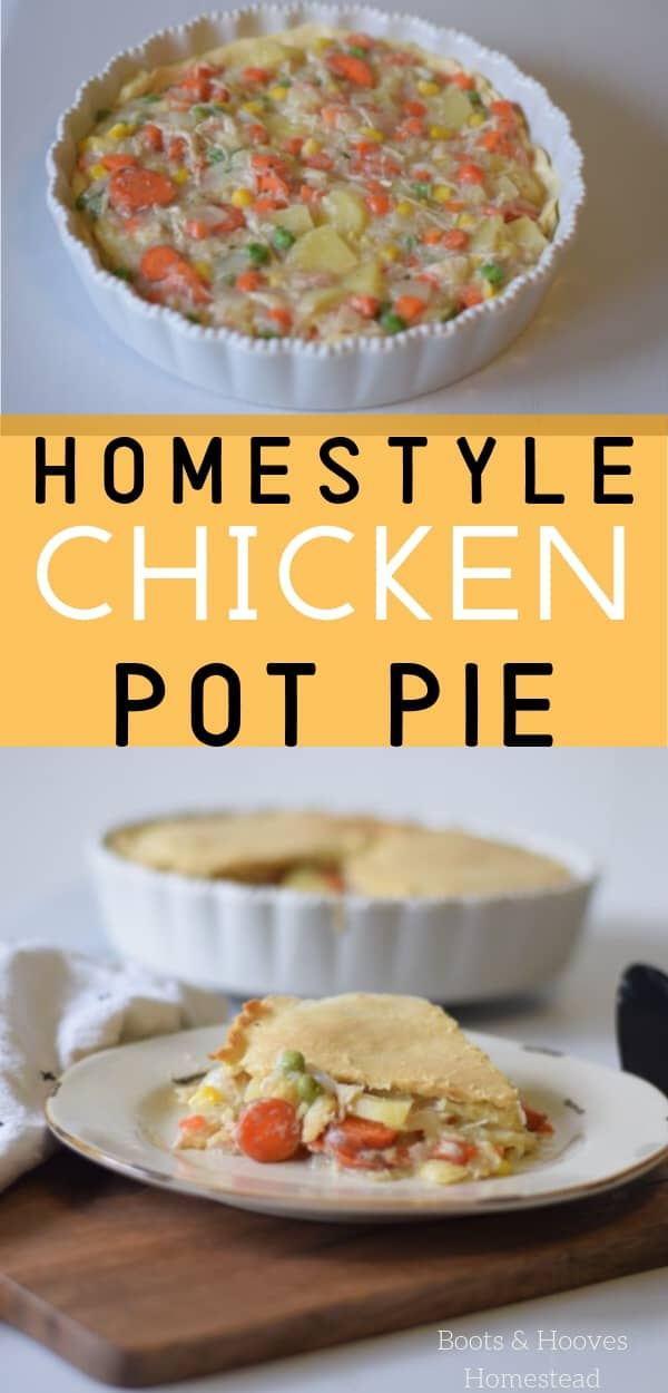 chicken pot pie in a white pie dish