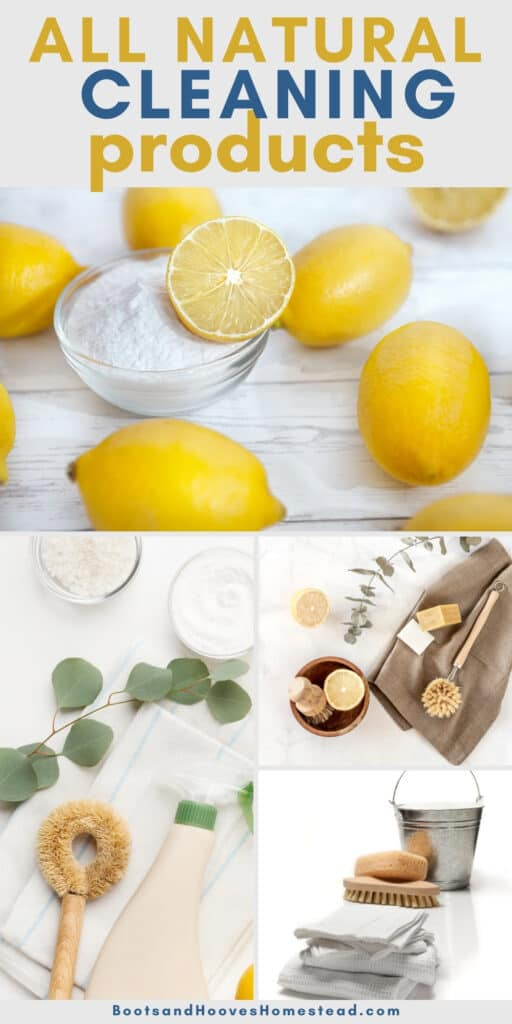 photo collage of 4 images of natural diy cleaners