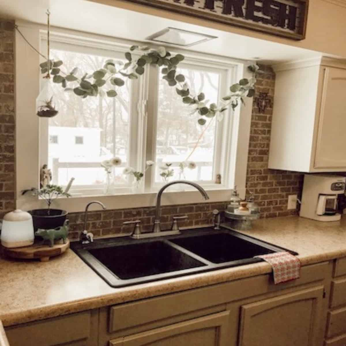 kitchen sink view with window above