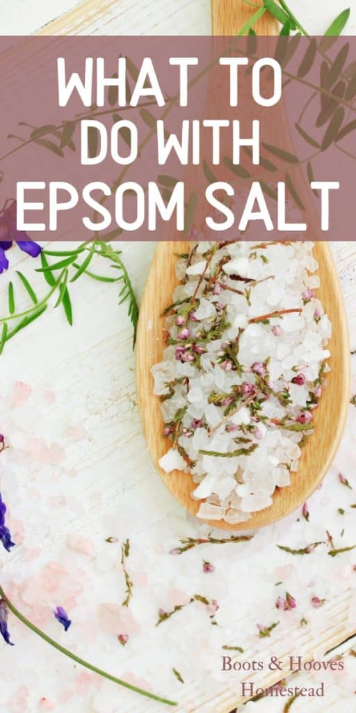 Epsom Salt in a wooden spoon