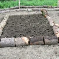 Log Raised Beds: A Free Raised Bed Solution