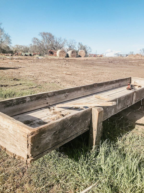 old cattle feed bunk
