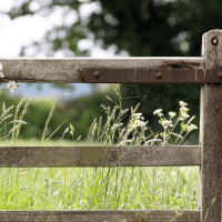 13 of the Best Farm Finance Tracking Tools
