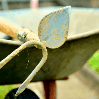 70+ Homesteading Essentials for Self-Sufficiency
