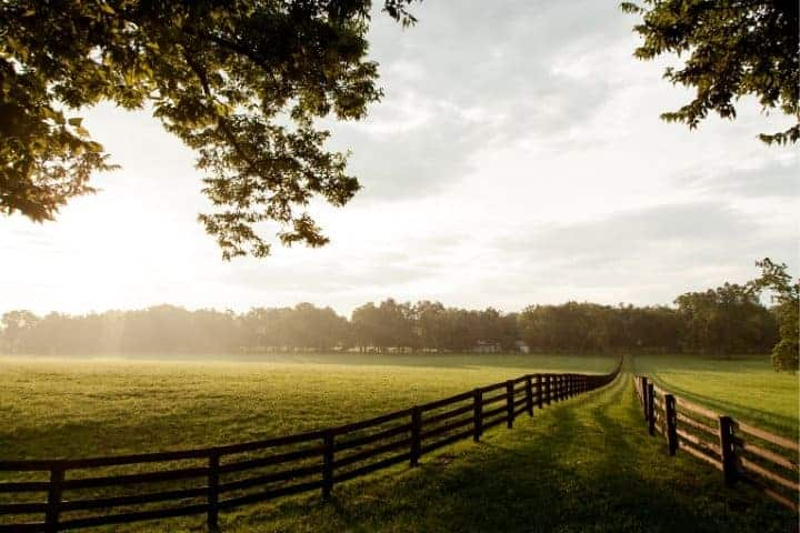 homestead pasture view