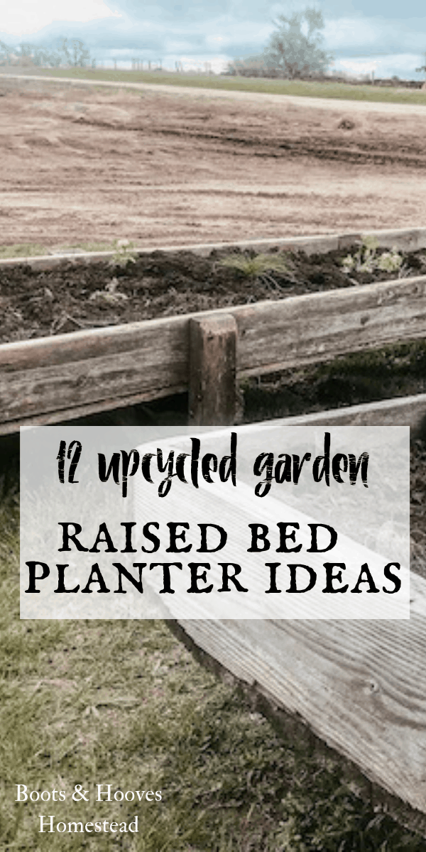 up cycled raised garden beds from feed bunks