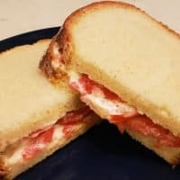 The world's best tomato sandwich