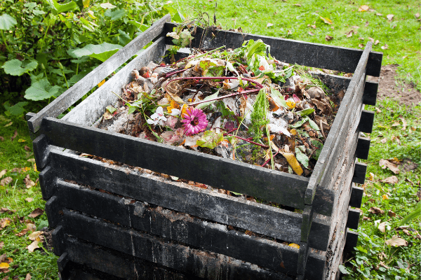 compost bin filled with food scraps