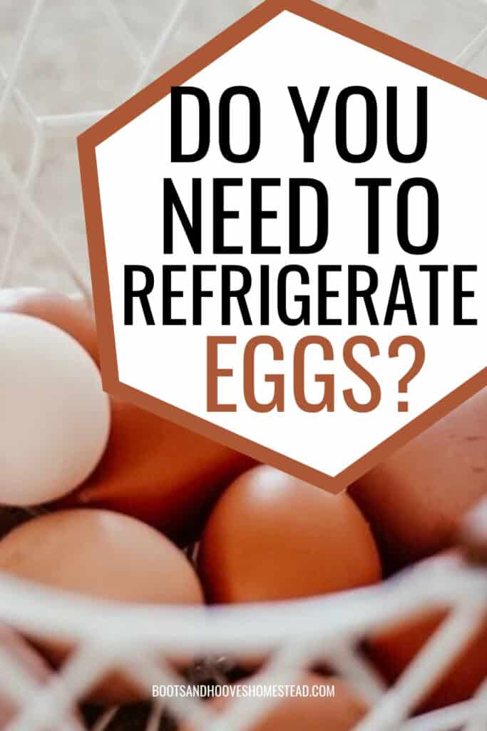 white wire egg basket with farm fresh eggs and text overlay that reads: do you need to refrigerate eggs?