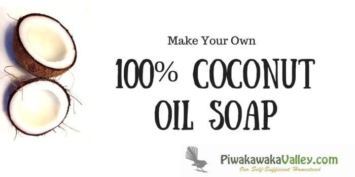 Make your own 100% coconut oil soap at home