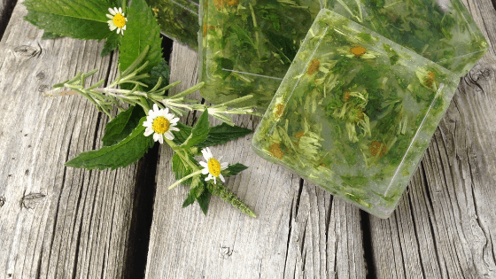 How to Make Dried Herb Soap