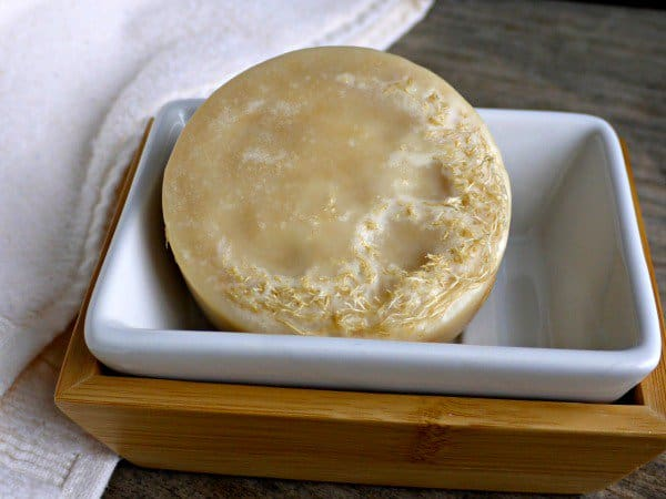 Make Your Own Loofah Soap (Moisturizing and Exfoliating)