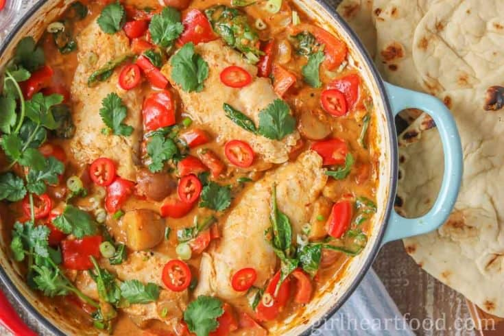 Fish Curry with Coconut Milk {made in one pot}
