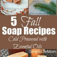 5 Fall Soap Recipes (Tallow or Vegan with Palm)