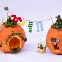 Pumpkin House: Engineering Project for Kids