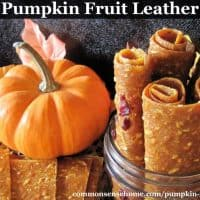 Pumpkin Fruit Leather - A Fun and Easy Pumpkin Snack