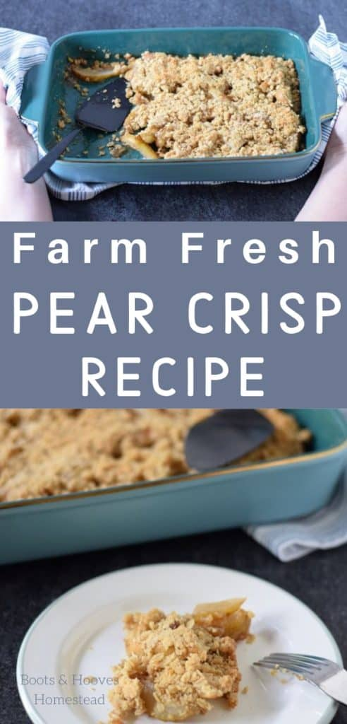 farm fresh pear crisp recipe