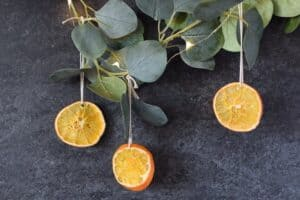 dried oranges for christmas decor