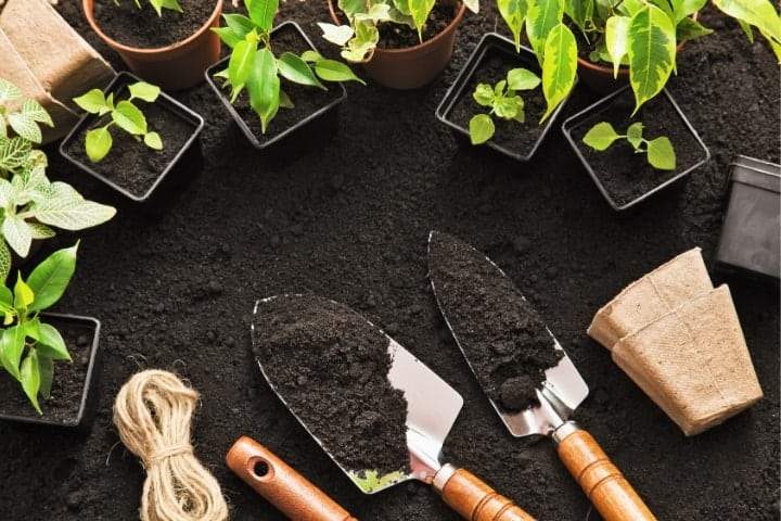 garden starts with shovels