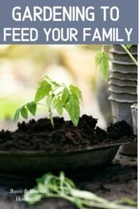 gardening to feed your family