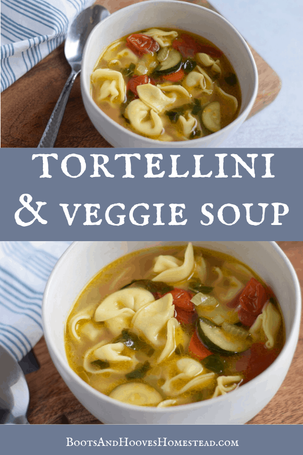 white bowl of vegetable tortellini soup