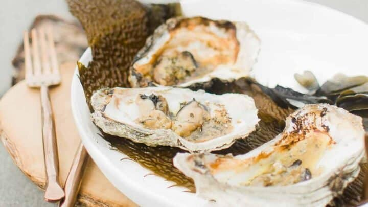Mediterranean Seafood Recipes Over 45 Boots Hooves Homestead