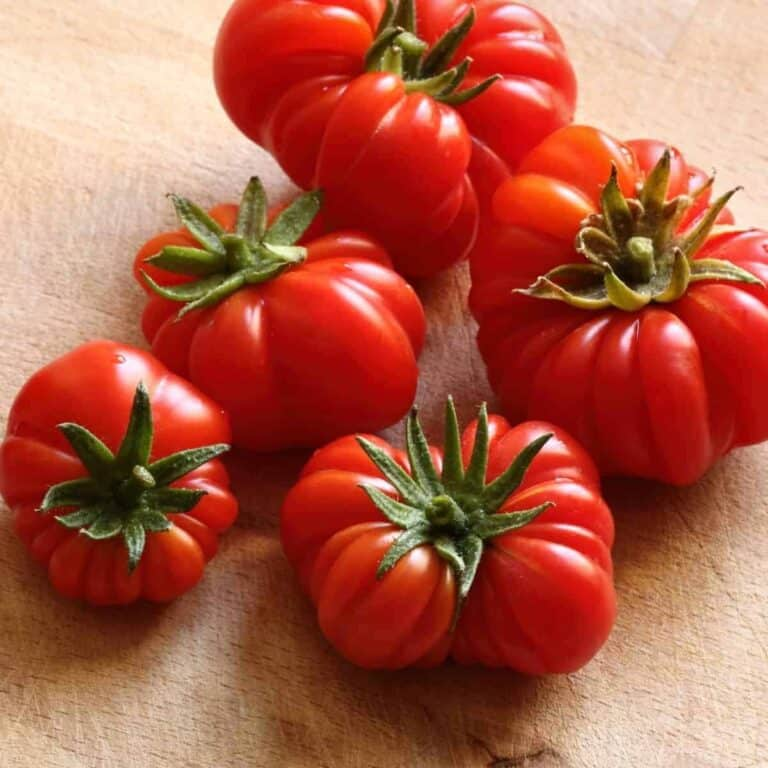 a pile of Rosso Sicilian tomatoes on wooden cutting board