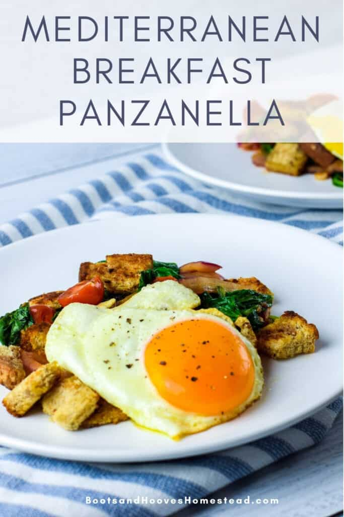 white plates of panzanella topped with eggs