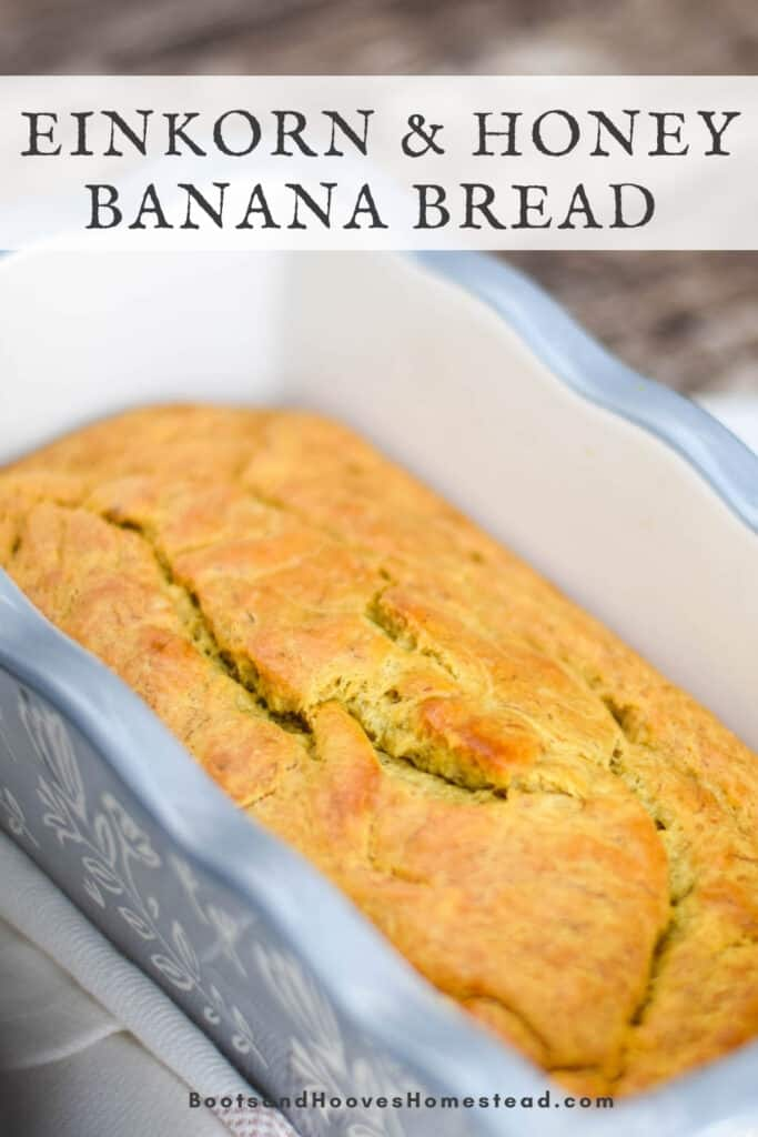 einkorn banana bread in gray loaf pan